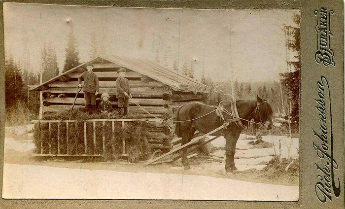 Körning av hö, foto: Rich. Johansson (farfarsarv.blogg.se).